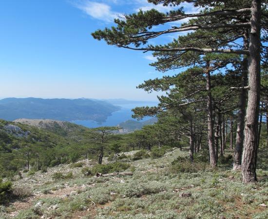 Pelješac Peninsula, Sveti Ilija