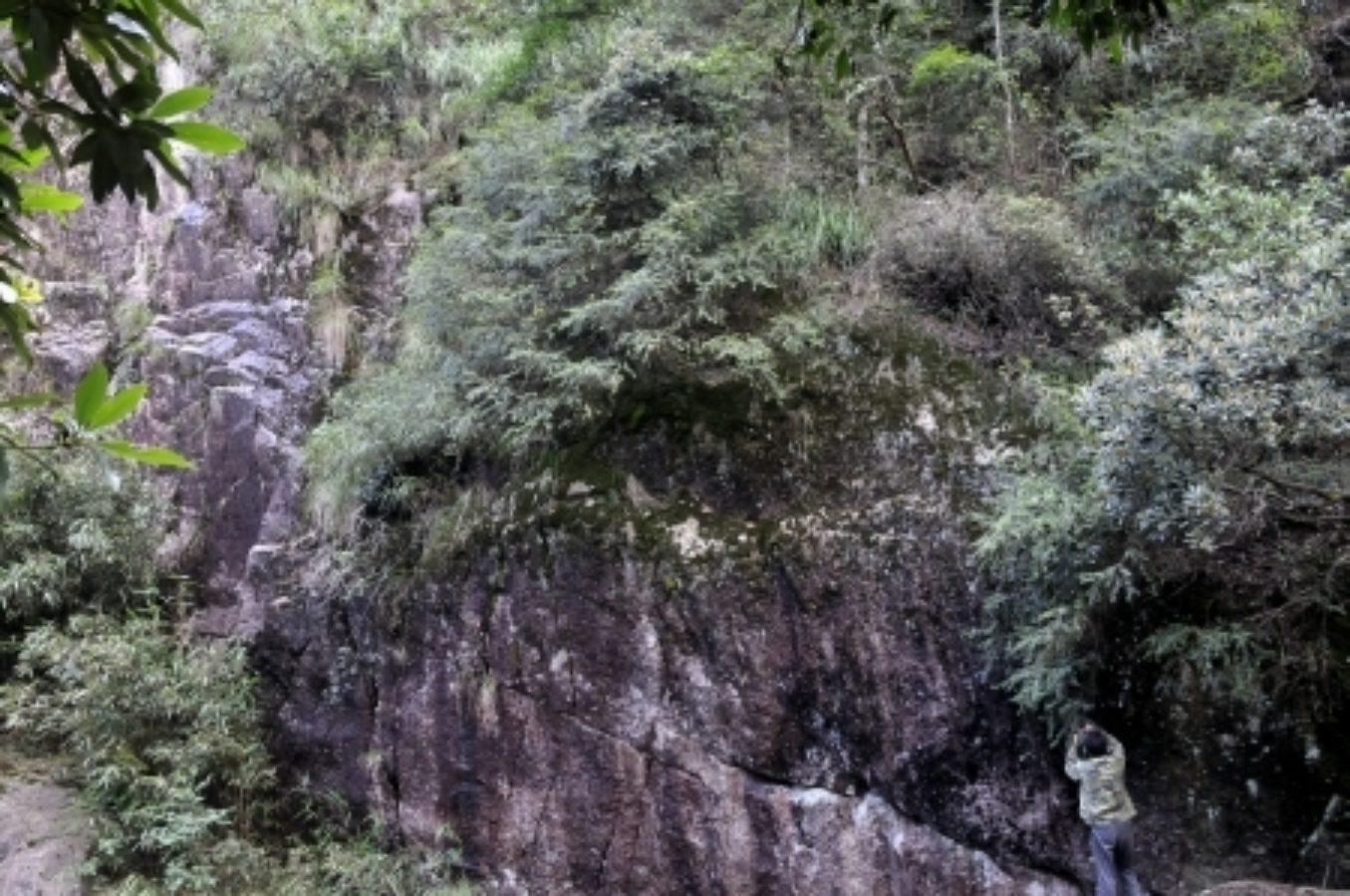 Mang Shan Park