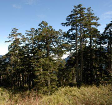 <p>Taroko National Park, Taiwan</p>