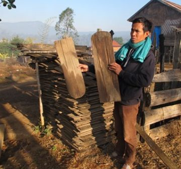 Wood commonly used for shingles, Nakai Plateau Lao PDR